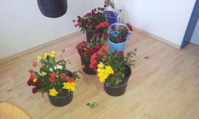 Jede Menge Rosen für die glücklichen Empfänger.